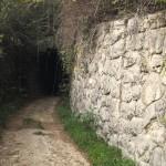 Parenzana Livade-Motovun_006