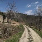 Parenzana Livade-Oprtalj_006