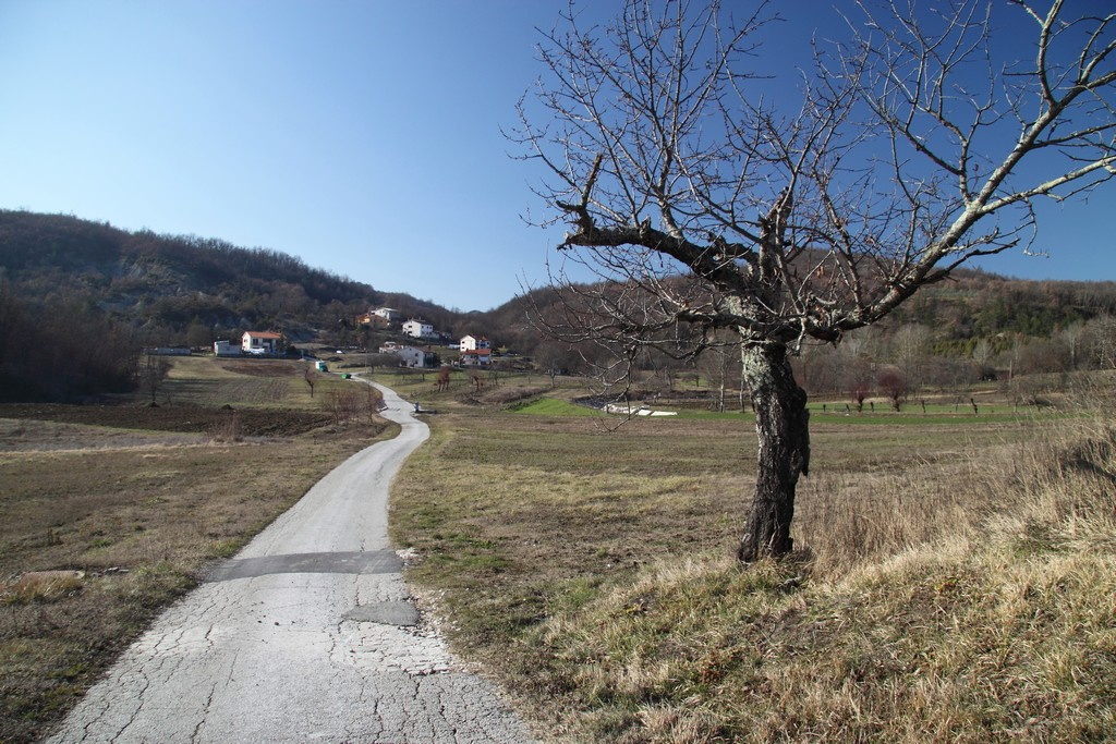 Pićan-Rimanići_23012010_002