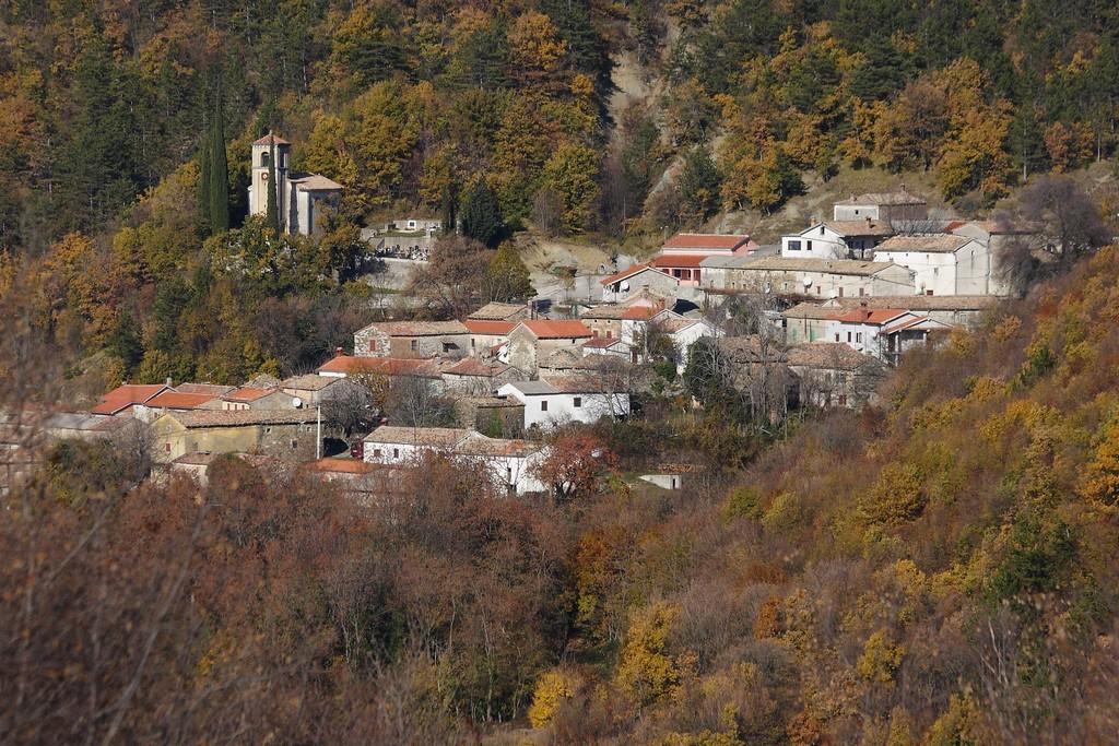 Semić-Brest_26112011_004