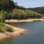 Bajer jezero_13082012_010