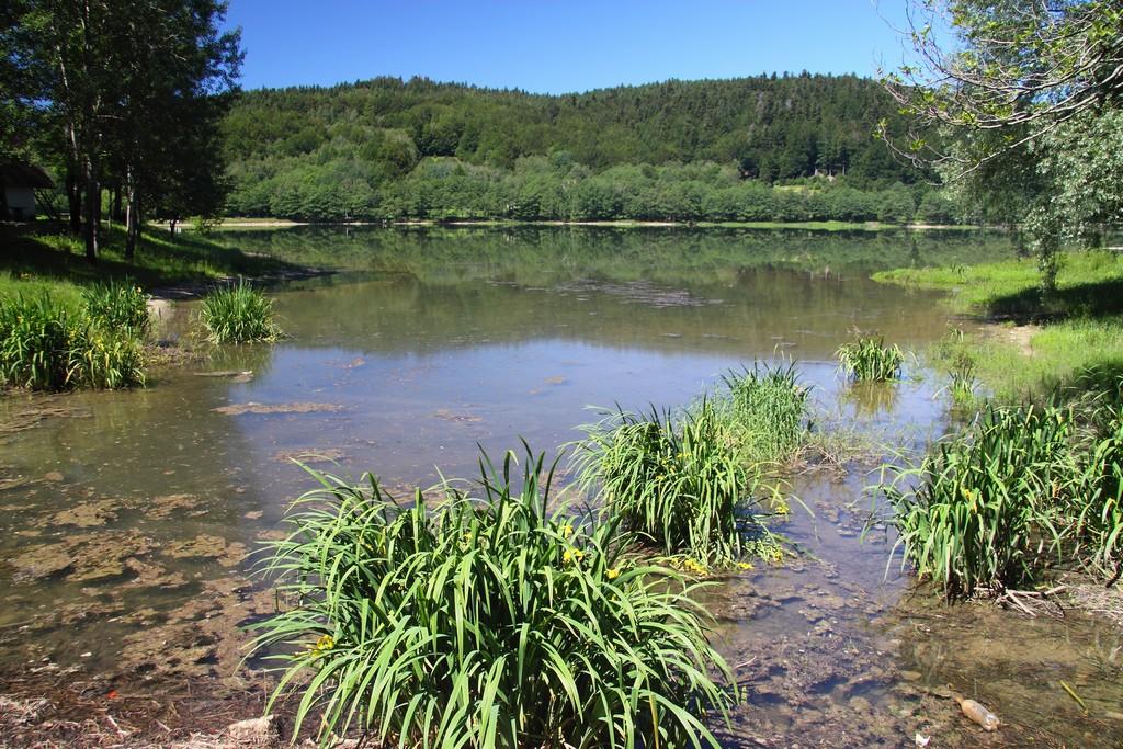 Bajer jezero_16062012_002