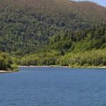 Bajer jezero_16062012_007