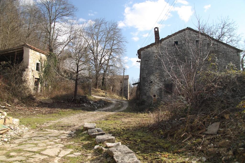 Benčići_16022013_0133