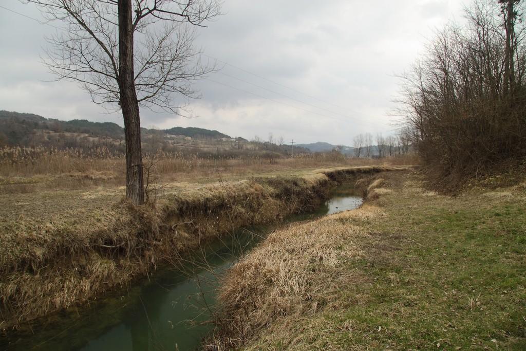 Rakov potok_20032010_002
