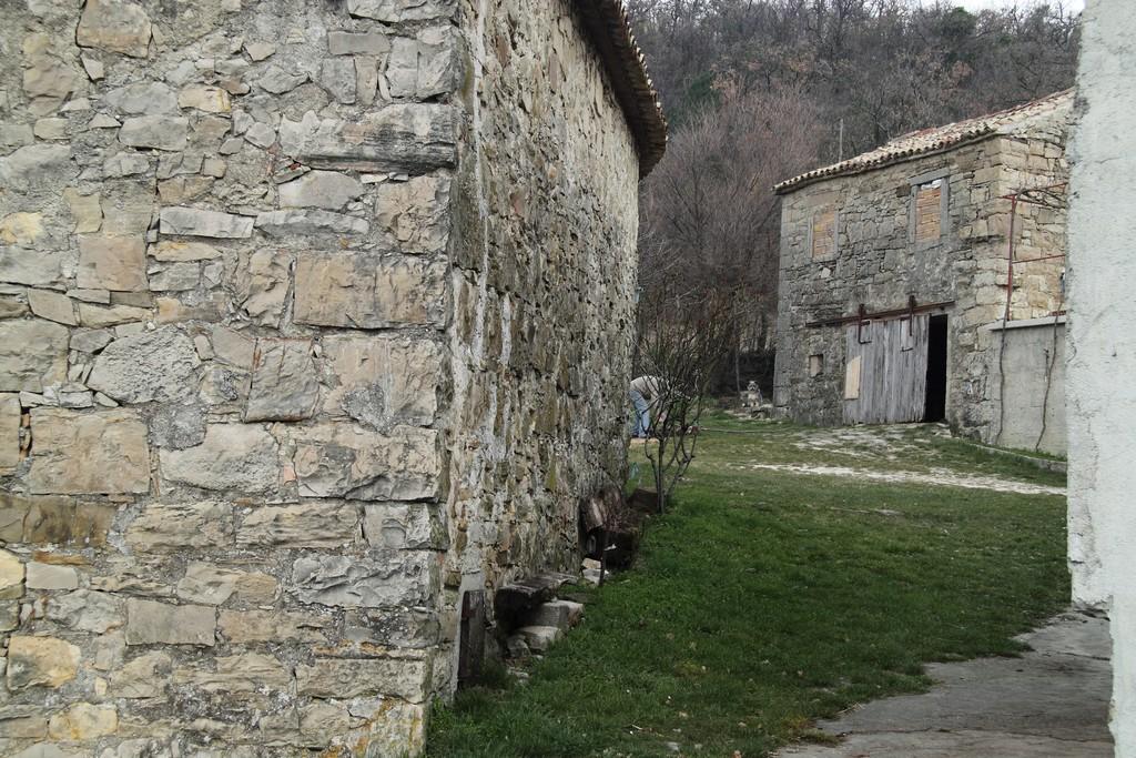 Tupaljica_20032010_002